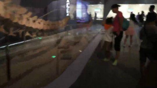 【直播时刻】武汉自然博物馆·贝林大河生命馆开馆 20180718 11点场