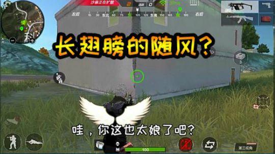 随风求生之旅08:随风起歪脑筋,长个翅膀这是想开飞天挂?