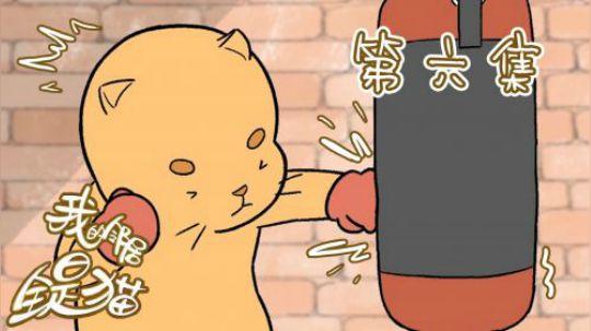 猫咪在家努力练习拳击,一不小心将沙袋打倒在地,看着倒地的沙袋,猫猫居然做出令人啼笑皆非的举动....