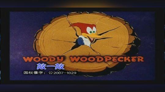 暴露童年系列动画片啄木鸟伍迪op 看过的小伙伴点赞咯