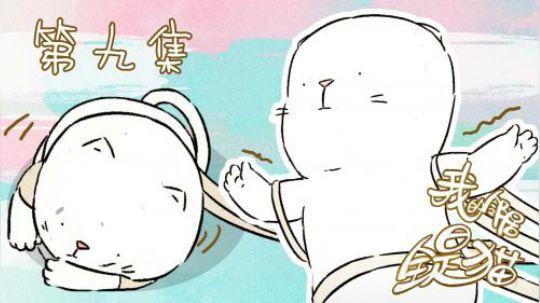 当一只猫咪看见卷纸之后会做出哪些举动呢? 当然是把自己裹成一个球球啊!