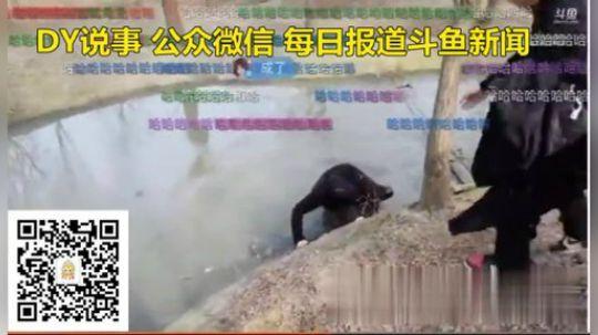 骚骚不慎掉入河中