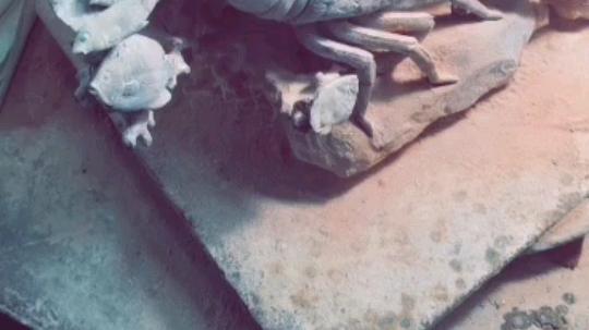 传统手艺~寿山石雕
