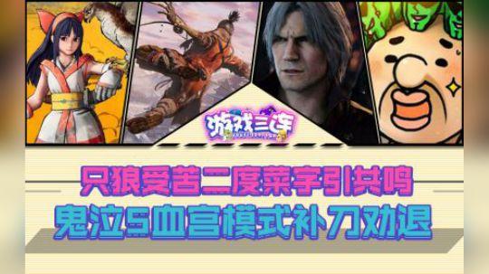 游戏三连Vol.3只狼受苦二度菜字引共鸣,鬼泣5血宫模式补刀