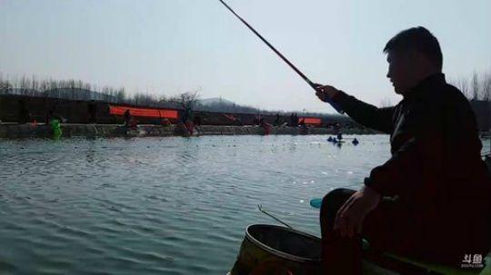 黑坑飞磕300斤鲫鱼视频5