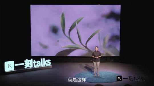 张文颖:买下500亩森林,如何种出最原始的茶滋味?
