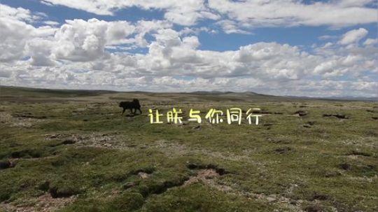 《小戴闯长江》第一季 第二集