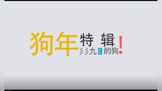 彡彡九户外-339的小狗(狗年特辑)