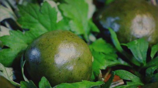 """清明雨上,做个""""青团子""""吃吃!  艾草是植物界的万金油,好处多的说不完。这个季节的艾草刚刚长出来,嫩嫩的艾叶做成小糯米团子配上这个春季第一茬嫩笋子炒腊肉,香到啃手指!"""