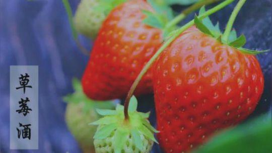 亲手为自己酿一壶如晨露般清甜的草莓酒吧!