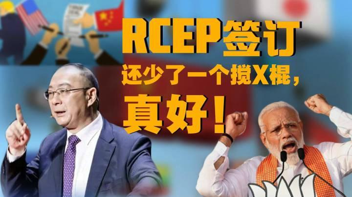金燦榮:RCEP簽訂,還少了一個攪X棍,真好!